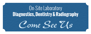 On-Site Laboratory | Diagnostics, Dentistry & Radiography
