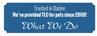 Trusted in Baden | We've provided TLC for pets since 2008!